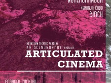 http://atolgab.com/files/gimgs/th-20_articulated-cinema.jpg